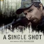 a-single-shot