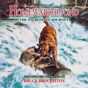 homeward-bound