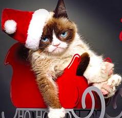 Paul Leonard Morgan To Score Lifetimes Grumpy Cats Worst Christmas Ever